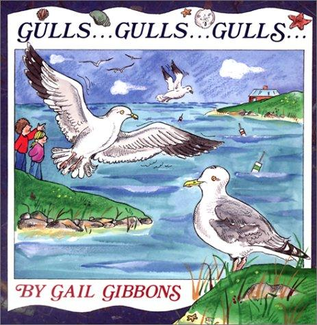Download Gulls Gulls Gulls