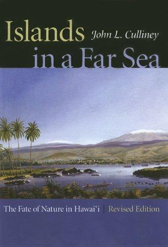 Download Islands in a far sea