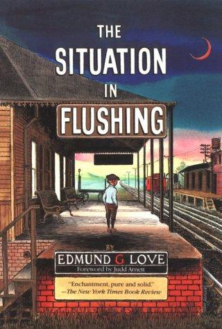 Download The situation in Flushing