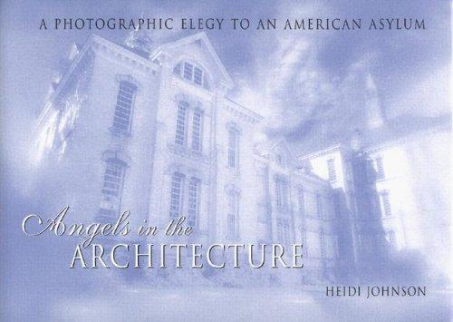 Download Angels in the Architecture