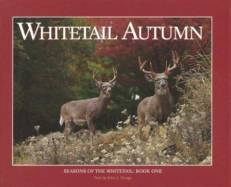 Whitetail autumn by John J. Ozoga